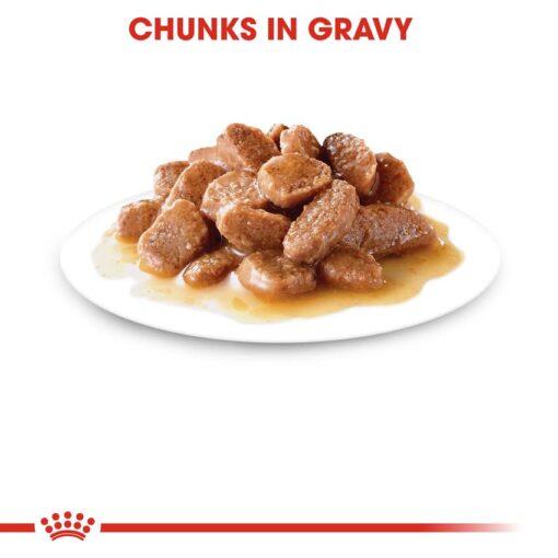 rc fhn wet ageing12gravy cv eretailkit 3 1 - Royal Canin - Feline Health Nutrition Ageing +12 Gravy