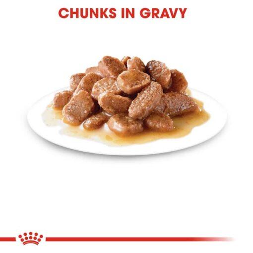 rc fhn wet sterilisedgravy cv eretailkit 3 - Royal Canin - Feline Health Nutrition Sterilised Gravy