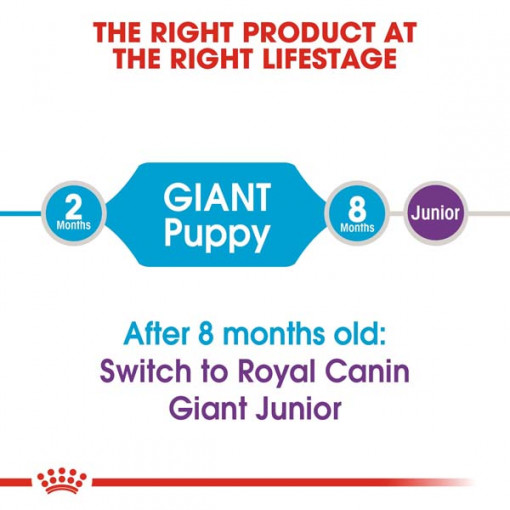 rc shn puppygiant cv eretailkit 1 - Royal Canin - Size Health Nutrition Giant Puppy