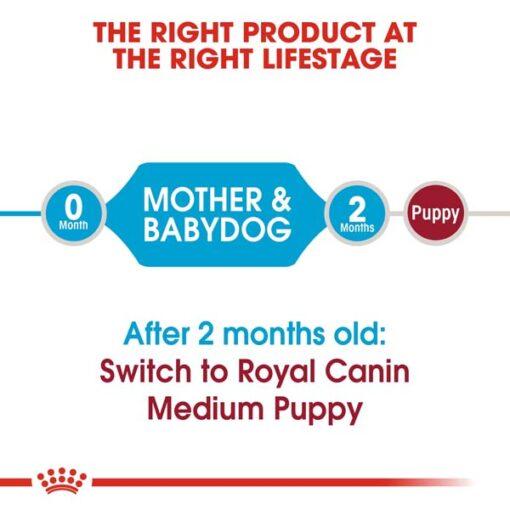 rc shn puppymediumstarter cv eretailkit 1 - Royal Canin - Size Health Nutrition Medium Starter