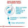 rc shn puppymediumstarter cv eretailkit 2 - Royal Canin - Size Health Nutrition Medium Starter