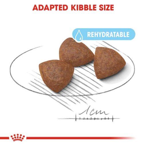 rc shn puppymediumstarter cv eretailkit 3 - Royal Canin - Size Health Nutrition Medium Starter