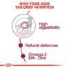 rc shn wet mediumadult cv eretailkit 2 - Royal Canin - Size Health Nutrition Medium Adult