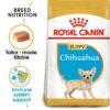ro189280 1 - Royal Canin - Chihuahua Puppy