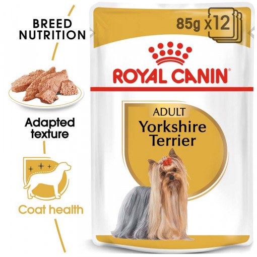 ro224320 - Royal Canin - Adult Yorkshire Terrier Wet Food