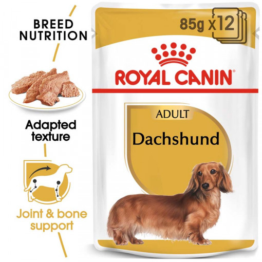 ro224360 - Royal Canin - Adult Dachshund Wet Food