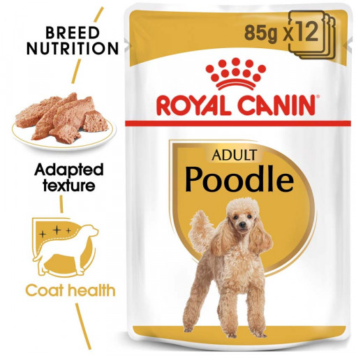 ro224370 - Royal Canin - Adult Poodle Wet Food