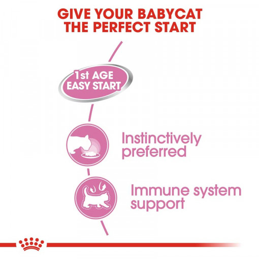 rc fhn wet m bloaf cv eretailkit 2 - Royal Canin Mother Babycat Mousse Canned Cat Food