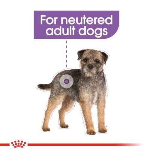 ccn sterilisedmini cv eretailkit 2 - Royal Canine - Care Nutrition Mini Sterilised Adult