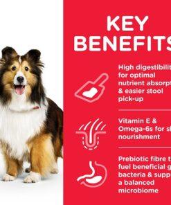 DOG Adult Medium Stomach Skin Chicken Transition Benefits 604300 - Deals