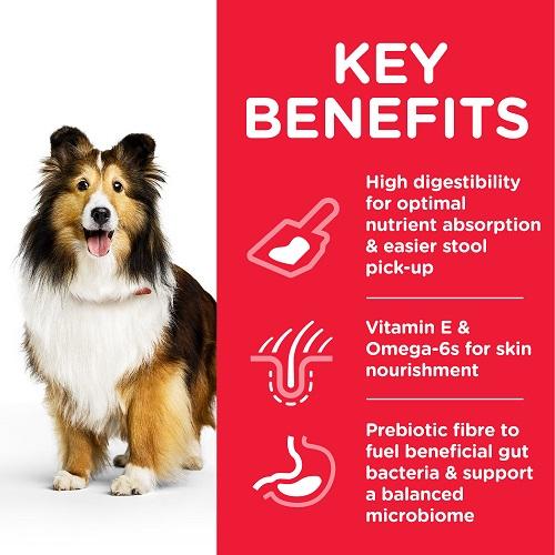DOG Adult Medium Stomach Skin Chicken Transition Benefits 604300 - Hill's Science Plan - Adult Sensitive Stomach & Skin Canine w/Chicken