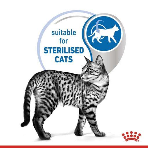 rc spt wet ind7sterjelly cv 2 med. res. basic - Royal Canin Feline Health Nutrition Indoor 7+ Jelly