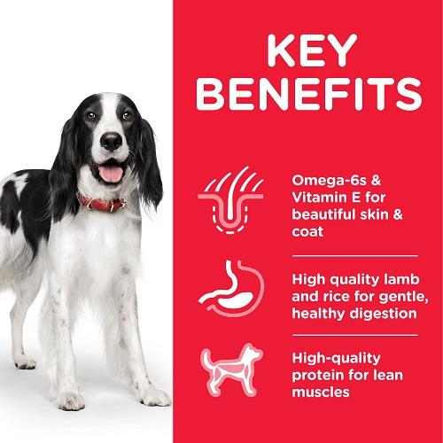 DOG Adult Medium Lamb Transition Benefits 1 604357 - Hill's Science Plan Medium Adult Dog Food With Lamb & Rice
