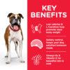 DOG Adult Medium Light Chicken Transition Benefits 604282 - Hill's Science Plan Light Medium Adult Dog Food With Chicken