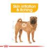 Dermacomfort 05 - Royal Canin - Canine Care Nutrition Medium Dermacomfort
