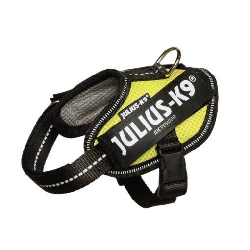 20pa ne - Julius K9 Powair Harness Neon