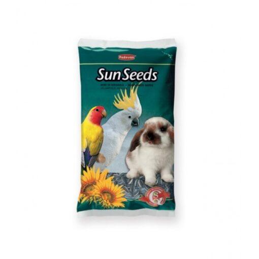 PP00335 500x500 1 - Padovan Sunflower Seed