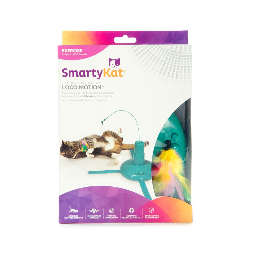 smartykat 3 - SmartyKat Loco Motion Toy