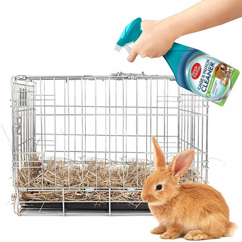 Cage Hutch 3 - Cage & Hutch Natural Anti-Bacterial Cleaner