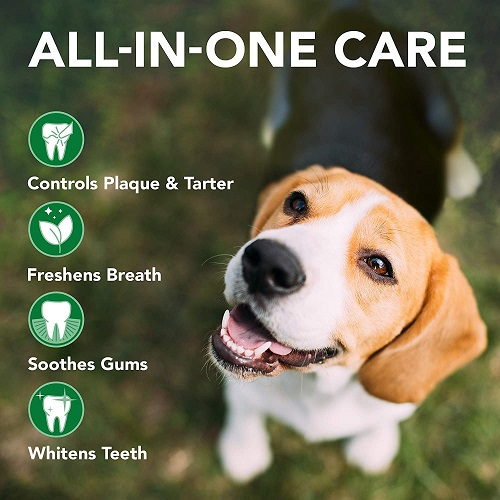 Complete Enzymatic Dental Care Kit 4 - Complete Enzymatic Dental Care Kit