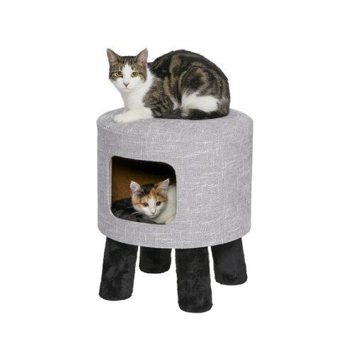 Feline Nuvo Stella 1 - Feline Nuvo Stella for Cat