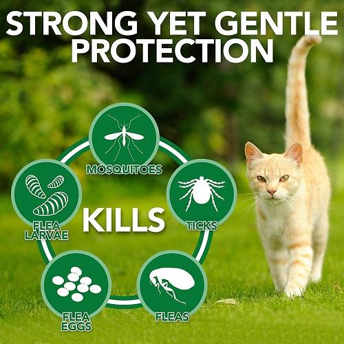 Flea Tick Home Spray CATS 2 - Natural Flea and Tick Home Spray for CATS, 32 oz