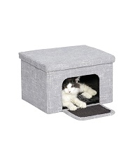 Cat Cube and Tunnel