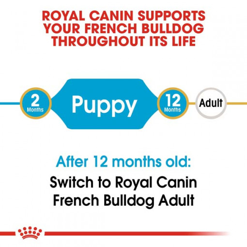 rc bhn puppyfrenchbulldog cv eretailkit 1 - Royal Canin Breed Health Nutrition French Bulldog Puppy