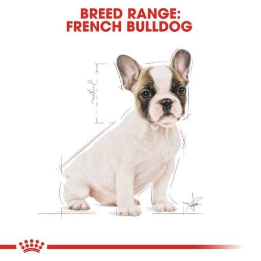 rc bhn puppyfrenchbulldog cv eretailkit 4 - Royal Canin Breed Health Nutrition French Bulldog Puppy