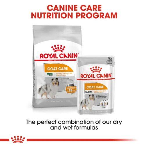 rc ccn wet coat cv eretailkit 4 - Royal Canin Canine Care Nutrition Coat Beauty