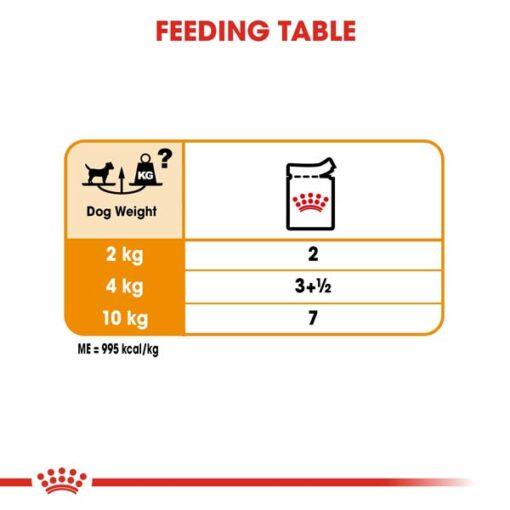 rc ccn wet coat cv eretailkit 5 - Royal Canin Canine Care Nutrition Coat Beauty