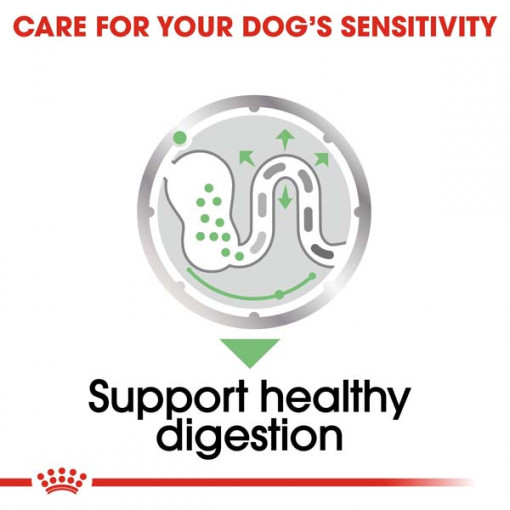 rc ccn wet digestive cv eretailkit 3 - Royal Canin Canine Care Nutrition Digestive Care