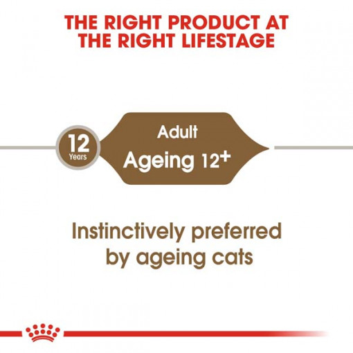 rc fhn wet ageing12jelly cv eretailkit 1 - Royal Canin - Feline Health Nutrition Ageing +12 Jelly