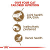 rc fhn wet ageing12jelly cv eretailkit 2 - Royal Canin - Feline Health Nutrition Ageing +12 Jelly