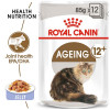 rc fhn wet ageing12jelly mv eretailkit - Royal Canin - Feline Health Nutrition Ageing +12 Jelly