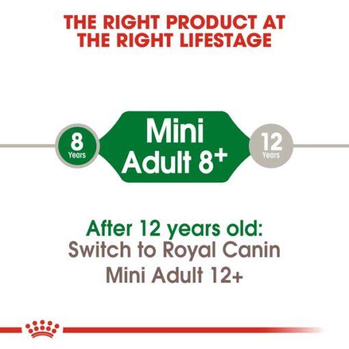 rc shn adultmini8 cv eretailkit 1 1 - Royal Canin Size Health Nutrition Mini Adult 8+