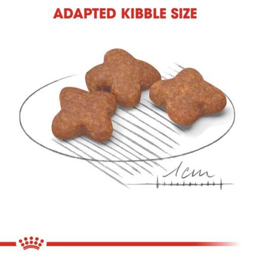 rc shn adultmini8 cv eretailkit 3 1 - Royal Canin Size Health Nutrition Mini Adult 8+