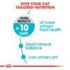 ro241400 4 - Royal Canin Feline Care Nutrition Urinary Care