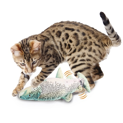 2027 with cat - AFP Jittering Fish Trout