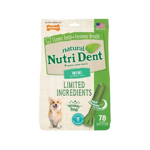 ntd440m78p 1 - Nylabone Nutri Dent Fresh Breath, Mini, 78 Count