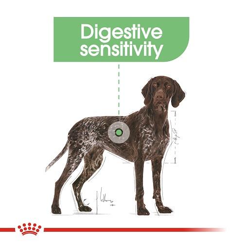 rc ccn digestivemaxi cv eretailkit 2 - Royal Canin - Canine Care Nutrition Maxi Digestive Care