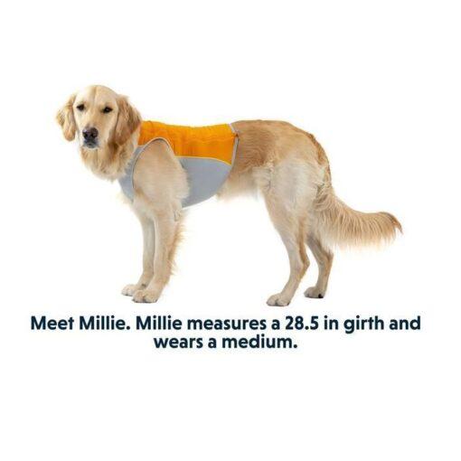 0545 m - Ruffwear Jet Stream Dog Cooling Vest Orange