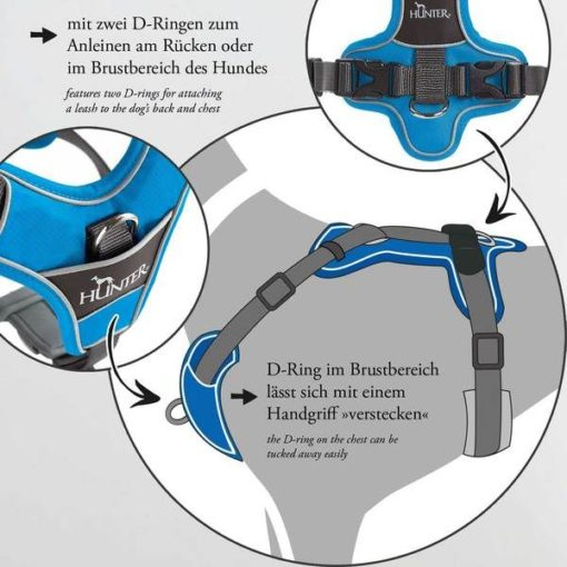 300543 blue 5 - Hunter Divo Dog Harness Red