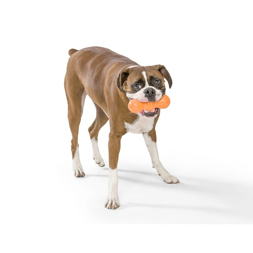 Rumpus Chew Toy 4 - Rumpus Chew Toy Tangerine