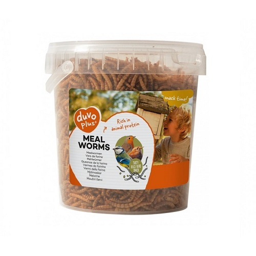 duvo meal worms bucket 200g - Duvo Meal Worms Bucket 200g