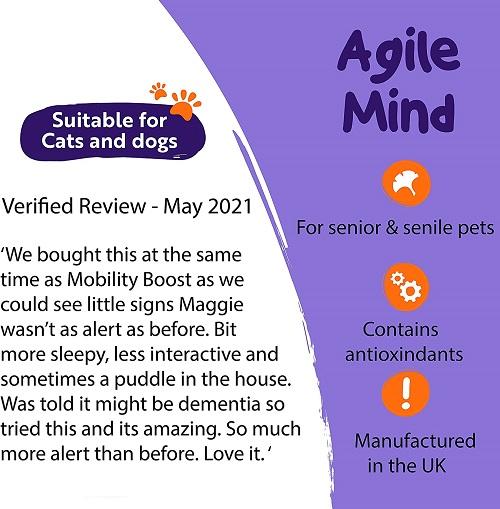 petexx agilemind 1 - PetExx Agile Mind