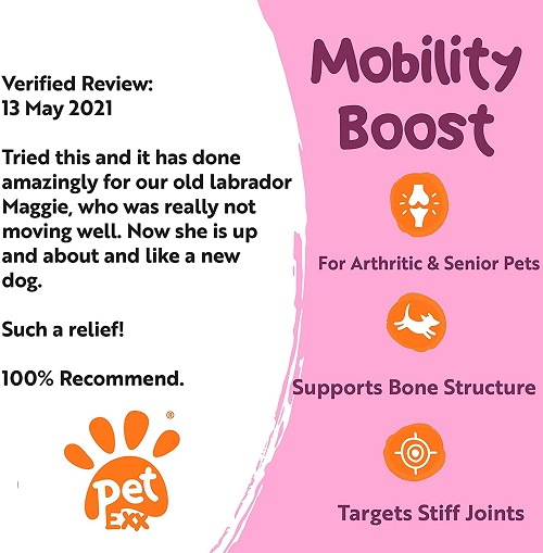 petexx mobility1 - PetExx Mobility Boost