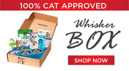whiskerbox main1 - Subscription Box