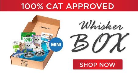 whiskerbox mini - Subscription Box