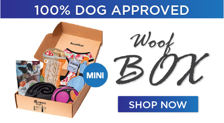 woofbox mini1 1 - Subscription Box